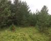 Земельный участок на Родниковой